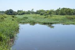 River in Las Choapas, Veracruz Royalty Free Stock Image