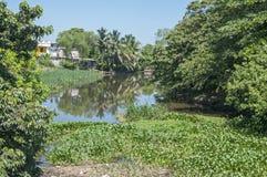 River in Las Choapas, Veracruz Stock Image