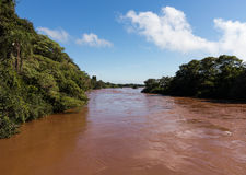 River leading to Iguassu Falls Royalty Free Stock Image