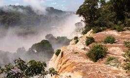River leading to Iguassu Falls Royalty Free Stock Image
