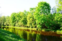 River Levuo passes through the green forest Stock Photos