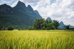 River Li Royalty Free Stock Images