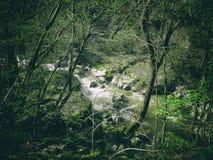 The river of life, both spiritual and living. stock photography