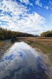 River of Light. Alaska creek runs to the ocean under blue skies Stock Images