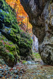 River in limestone canyon Royalty Free Stock Photography