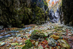 River in limestone canyon Stock Photo
