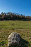The meadow seen from the height of the stone.  royalty free stock photography