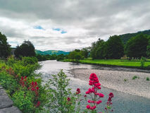 River in Llranrwst. In Wales royalty free stock photo
