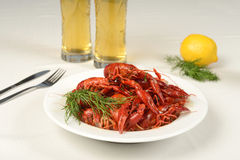 River lobster on white tablecloth with beer Royalty Free Stock Photos