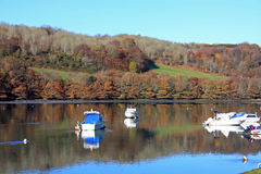 River Looe Stock Images