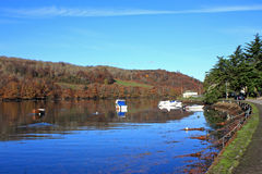 River Looe Stock Image