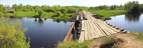The river Luga, Leningrad region, Russia Royalty Free Stock Photo