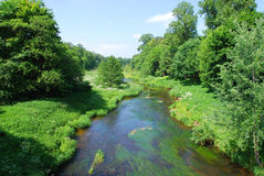 River and lush greenery. Small river Merkys with surrounded lush greenery in Lithuania, Europe stock photo