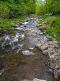The River Lyn at Watersmeet near Lynmouth Devon Royalty Free Stock Photos