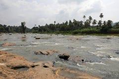 The river Maha Oya in Sri Lanka. The river of Maha Oya in Sri Lanka royalty free stock images