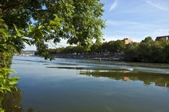 The river Main Stock Photography