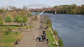 River Main in Frankfurt, Germany stock video footage