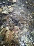 River Mannarkkad palakkad india. Mannarkkad kerala palakkad stock photo