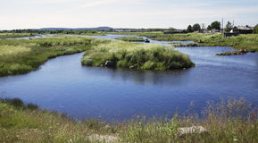 The river with many small islands. Covered with green grass, near the village Royalty Free Stock Photography