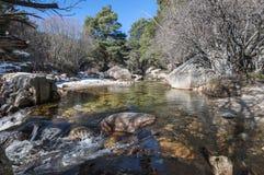 The River Manzanares Stock Photos