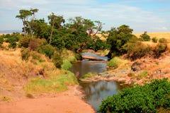 River in Masai Mara Royalty Free Stock Photo
