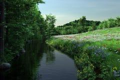 River Meadow Royalty Free Stock Photos