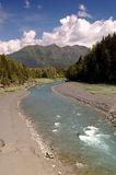 River, meadow, tres and moutains, alaska Stock Photo