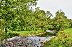 River meandering though lush English countryside. A shallow, tranquil, rock strewn  river flowing through lush English countryside, with tree lined banks and Stock Image