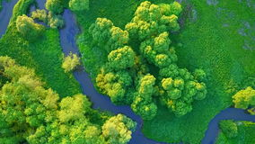 River meanders stock video