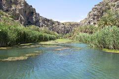 The river Megalopotamos at its mouth at Preveli Stock Image