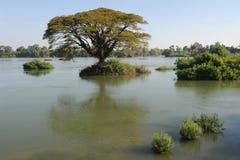 River Mekong at Don Det island. On Laos stock photo
