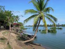 River Mekong at Don Det island. On Laos stock images