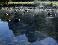 River Merced Stock Photography
