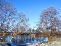 River Minija and snowy trees, Lithuania stock images