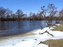 River Minija and nice trees in spring , Lithuania Royalty Free Stock Image