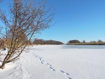 River Minija in winter, Lithuania Stock Image
