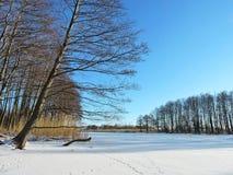 River Minija in winter, Lithuania Royalty Free Stock Photos