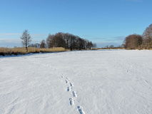 River Minija in winter, Lithuania Stock Images
