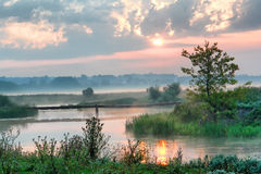 River in mist. Beautiful mist on river in ray sun Stock Images