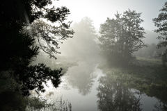 River in the mist, the morning Stock Images