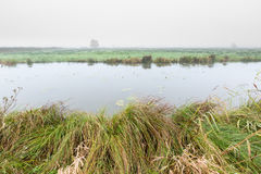 River in a misty morning rural landscape in the Netherlands Stock Photo