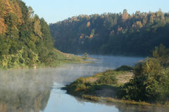 River in the morning Stock Image