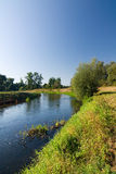River in the morning countryside Stock Photography