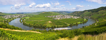 River mosel in trittenheim. Leiwen, germany Royalty Free Stock Photos