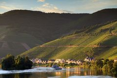 River Moselle and grape fields. Beautiful afternoon view of the river Moselle at the small wine growing town Zell an der Mosel with hills full of grape vines stock photo