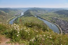 River Moselle near Zell and Punderich in Germany Stock Photography