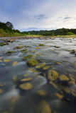 River with mossy rocks at Sabah, Borneo Royalty Free Stock Images
