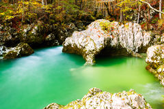 River Mostnica Mostnice Korita and Elephant formation. Near lake Bohinj in Slovenia Royalty Free Stock Photos