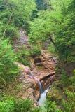 River in mountain canyon Royalty Free Stock Photos