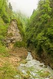 River in a mountain canyon Royalty Free Stock Photo